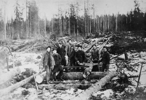 Спецпоселенцы на лесозаготовке