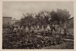 Огород Беклемишевского приюта